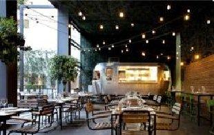 餐厅设计中植物装饰绿化的应用
