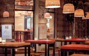 观赏性植物在餐厅设计中配置的几个要点